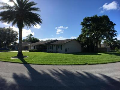 Port Orange Single Family Home For Sale: 1047 Wexford Way