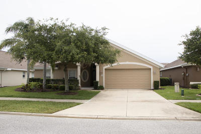 Volusia County Single Family Home For Sale: 5409 Canna Court