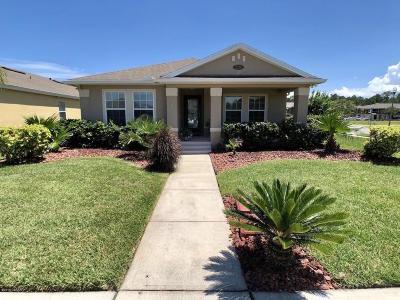 Volusia County Single Family Home For Sale: 3370 Pintello Avenue