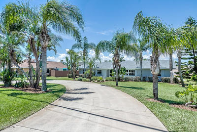 Volusia County Single Family Home For Sale: 2928 S Peninsula Drive