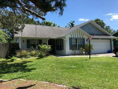 Volusia County Single Family Home For Sale: 60 Arroyo Parkway