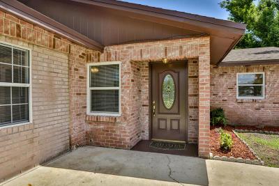 Volusia County Single Family Home For Sale: 1384 Alabama Avenue