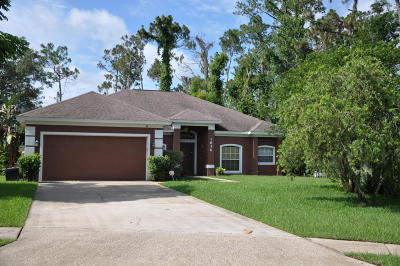 Volusia County Single Family Home For Sale: 1856 Chorpash Lane