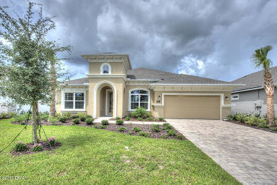 Ormond Beach Single Family Home For Sale: 905 Creekwood Dr