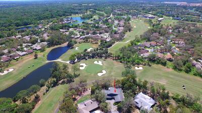New Smyrna Beach Single Family Home For Sale: 517 Boxwood Lane