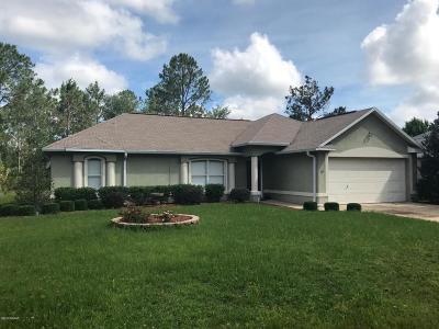 Palm Coast Single Family Home For Sale: 29 Pershing Lane
