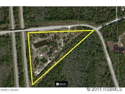 New Smyrna Beach Residential Lots & Land For Sale: 3160 Pioneer Trail