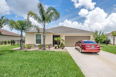 Daytona Beach Single Family Home For Sale: 127 Mulberry Branch Court