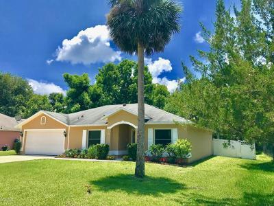 Palm Coast Single Family Home For Sale: 130 Sea Trail
