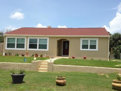 Daytona Beach Single Family Home For Sale: 131 Minerva Road