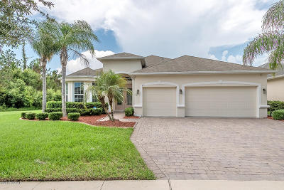 Daytona Beach Single Family Home For Sale: 212 Birkdale Drive