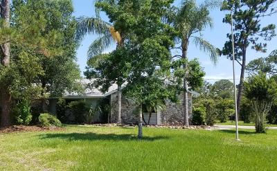 Ormond Beach Single Family Home For Sale: 65 Hidden Hills Drive