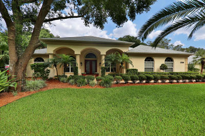 Ormond Beach Single Family Home For Sale: 3759 Carrick Drive