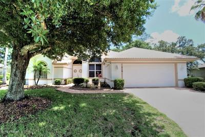 Ormond Beach Single Family Home For Sale: 716 Dolphin Head Lane