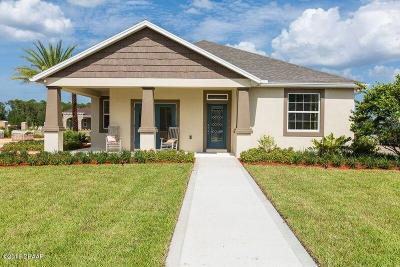 New Smyrna Beach Single Family Home For Sale: 3211 Meleto Boulevard