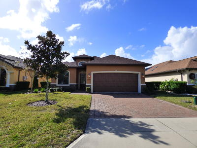 Ormond Beach Single Family Home For Sale: 3239 Tralee Drive