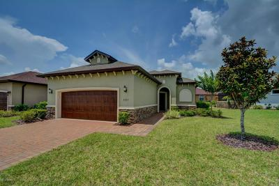 Ormond Beach Single Family Home For Sale: 3225 Tralee Drive