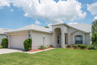 New Smyrna Beach Single Family Home For Sale: 1105 Plover Place