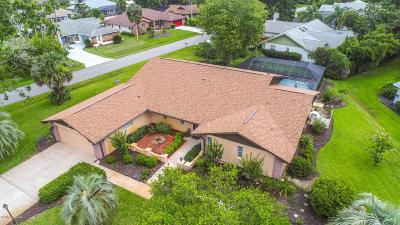 Palm Coast Single Family Home For Sale: 42 Webb Lane