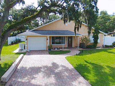 New Smyrna Beach Single Family Home For Sale: 637 Yupon Avenue
