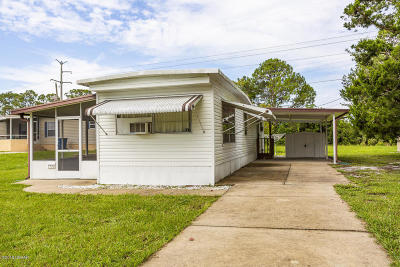 Ormond Beach Single Family Home For Sale: 1908 Sunny Palm Drive