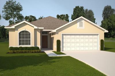 Palm Coast Single Family Home For Sale: 68 Park Place Circle