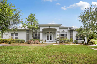 New Smyrna Beach Single Family Home For Sale: 431 Co Rd 415