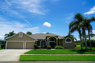 Port Orange Single Family Home For Sale: 6377 Fairway Cove Drive