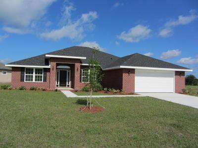 Flagler Beach Single Family Home For Sale: 20 Noah Boulevard