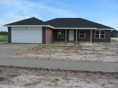 Flagler Beach Single Family Home For Sale: 4 Dancing Eagle Place