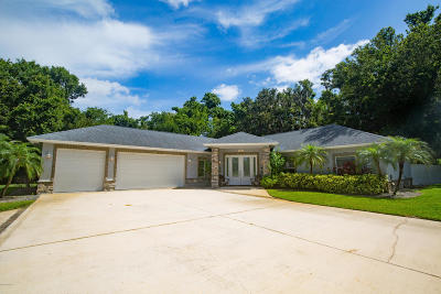 Ormond Beach Single Family Home For Sale: 385 Calle Grande Street