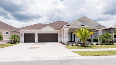 New Smyrna Beach Single Family Home For Sale: 3350 Bellino Boulevard