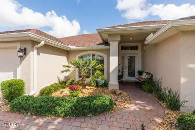 Palm Coast Single Family Home For Sale: 191 Arena Lake Drive