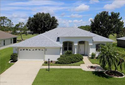 Port Orange Single Family Home For Sale: 6404 Longlake Drive