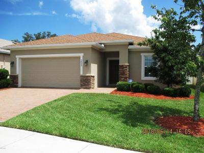 Port Orange Single Family Home For Sale: 3845 Esplanade Avenue