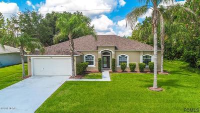 Palm Coast Single Family Home For Sale: 28 Feling Lane