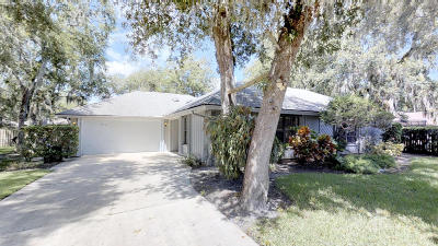 Port Orange Single Family Home For Sale: 6218 Yosemite Drive