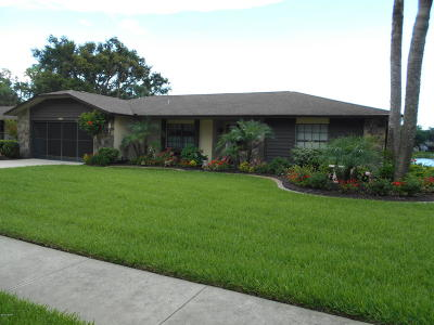 Port Orange Single Family Home For Sale: 3463 Country Walk Drive