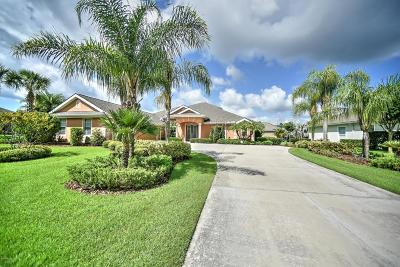 Ormond Beach Single Family Home For Sale: 837 Westlake Drive