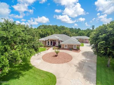 Port Orange Single Family Home For Sale: 5951 Peggy Barrow Court