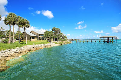 Ponce Inlet, South Daytona, Wilbur-by-the-sea Single Family Home For Sale: 102 McDonald Street