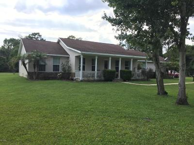 Port Orange Single Family Home For Sale: 2310 Jerry Circle