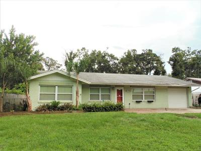 Deland  Single Family Home For Sale: 1670 Beasley Drive