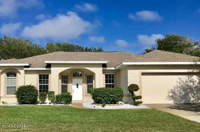 Ponce Inlet Single Family Home For Sale: 90 Buschman Drive