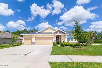 Hunters Ridge Single Family Home For Sale: 1 Abacus Avenue