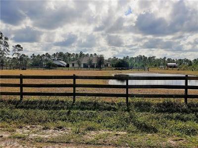 New Smyrna Beach Single Family Home For Sale: 3944 Brantford Road