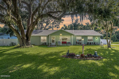 Edgewater Single Family Home For Sale: 1629 Sabal Palm Drive