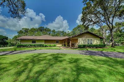 Deland Single Family Home For Sale: 2250 Oak Hill Drive
