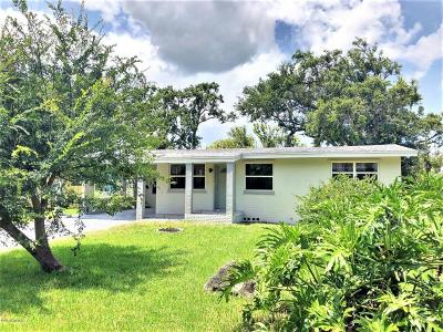 Ormond Beach Single Family Home For Sale: 33 Riverview Drive