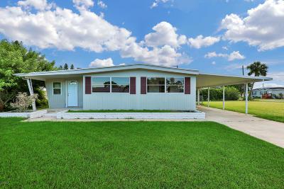 Port Orange Single Family Home For Sale: 5164 Pineland Avenue
